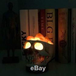 Crâne Sculpté Statue De Sel De L'himalaya Lampe Lumières, Gris Blanc 3d Avec Gradateur