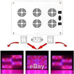 Morsen 2400w Led Élève La Lumière 2 Gradateur Sur L'interrupteur Spectre Complet Pour Hydropon